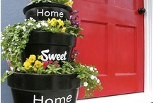 Flower ideas / Pot flowers
