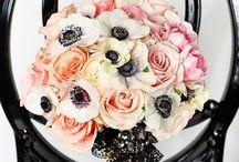 Winter Blush & Black Wedding