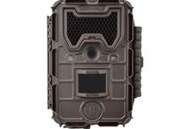 2014 Bushnell Trail Cameras / 2014 Bushnell Trail Cameras!