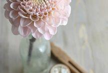 Margaux + Marius - Fleurs plan de table