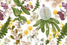 Botanical/inspiraton