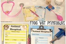 Animal vet party