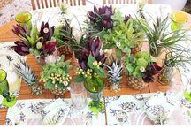 Mesas de Verão! / Inspirações para montar uma mesa com o clima do verão, valorizando cores vibrantes e itens alegres para almoços e jantares com amigos e familiares!