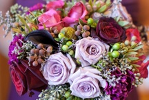 Elaine & Shaun / May 2014 - plum with some cadbury's purple and shades of lilacs, lavenders and greys.