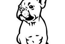 bulldog ♡