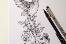 Szkice ptaki