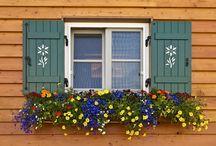 7-) Örnek Pencere Önleri