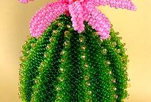 Mostacilla cactus