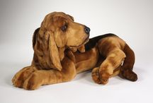 Bloodhound Dogs - Bloodhounds