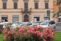 The British Institute of Rome-sede autorizzata di Viterbo