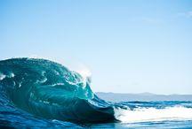 Shell box inspiration / Sea, Waves, Shell