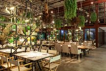 Restaurant Design - Inspiration Images / Inspiration Images for Thai Restaurant : Concept clean, modern with organic accents such as wood and plants.