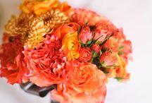 Nunta in portocaliu/Orange Weddings