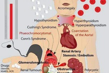 Hypertension / All about Hypertension