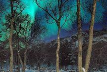 *Winter Wonderland* / by 'Donna Marie'