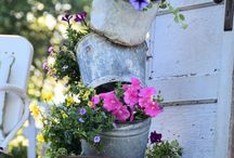 garden ideas / by Carol Yarberry