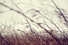 EKO : Winter Inspiration / #winter #style #inspration