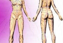 массаж лимфодренаж