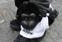 Cei mai trăsniți adidași! / Adidas Jeremy Scott