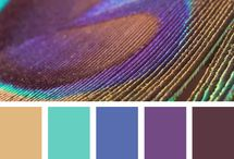 Color / by Kim Matsumoto