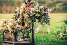 Wedding Pics - Flowers! / by Stef Bradbard Elliott