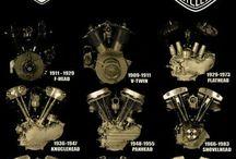 Harley Davidson / All things Harley