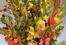 November / Winter Flowers / www.baremtnfarm.com