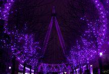 Purple! Purple! Purple!  / by Moni Eskaros