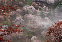 Visages et aspects du Japon XIV