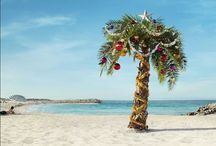 Palm trees beach christmas