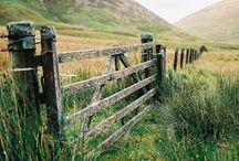 Fences / by Cheryl Hatfield