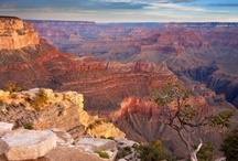 Wild West Arizona / sunny days and starry nights...and don't forget the Grand Canyon! There's so much to love about Arizona. / by Tripping.com