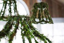 Moss decor ideas