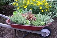 Gardening shiz