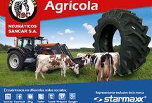 Neumáticos septiembre / Ofertas de neumáticos en este mes de la patria Aproveche los increibles precios en las mejores marca!!