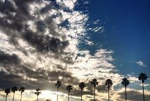 Barossa Dirt Instagram snaps