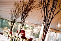 Wedding Decor Ideas / by Mely Miller