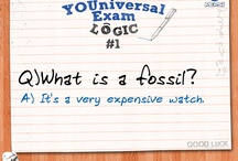 YOUniversal Exam Logic