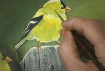 ANIMALS AND BIRDS TO PAINT