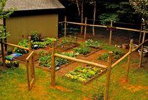 ogród ogrodzenia warzywnika