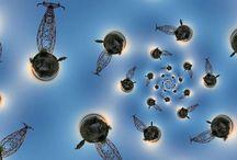 360 Spherical Panorama Photos / Where heaven and earth meet!