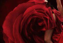 Dark Romantic
