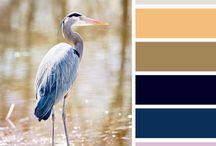 Paleta de colores / Un catálogo de colores   Minteirorismo Design (Miriam Castro - Diseñadora de interiores)
