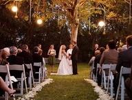 Wedding / by Sierra Payne
