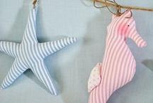 Mare stelle e cavallucci marini
