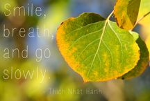 Thich Nhat Hanh <3