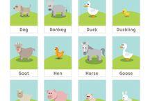 English Vocab Animals