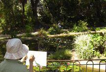 Richesse botanique / Une longue tradition botanique  Héritage du XIXe siècle, les parcs et jardins de Cherbourg-Octeville témoignent de la richesse botanique du monde grâce aux variétés exotiques ramenées à cette époque par les marins et les voyageurs.