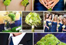 Jeff & Luke Wedding / Blue & green wedding colors / by Pamela Kirby