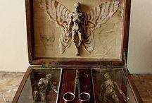 Cabinet of Fabulous Curiosities